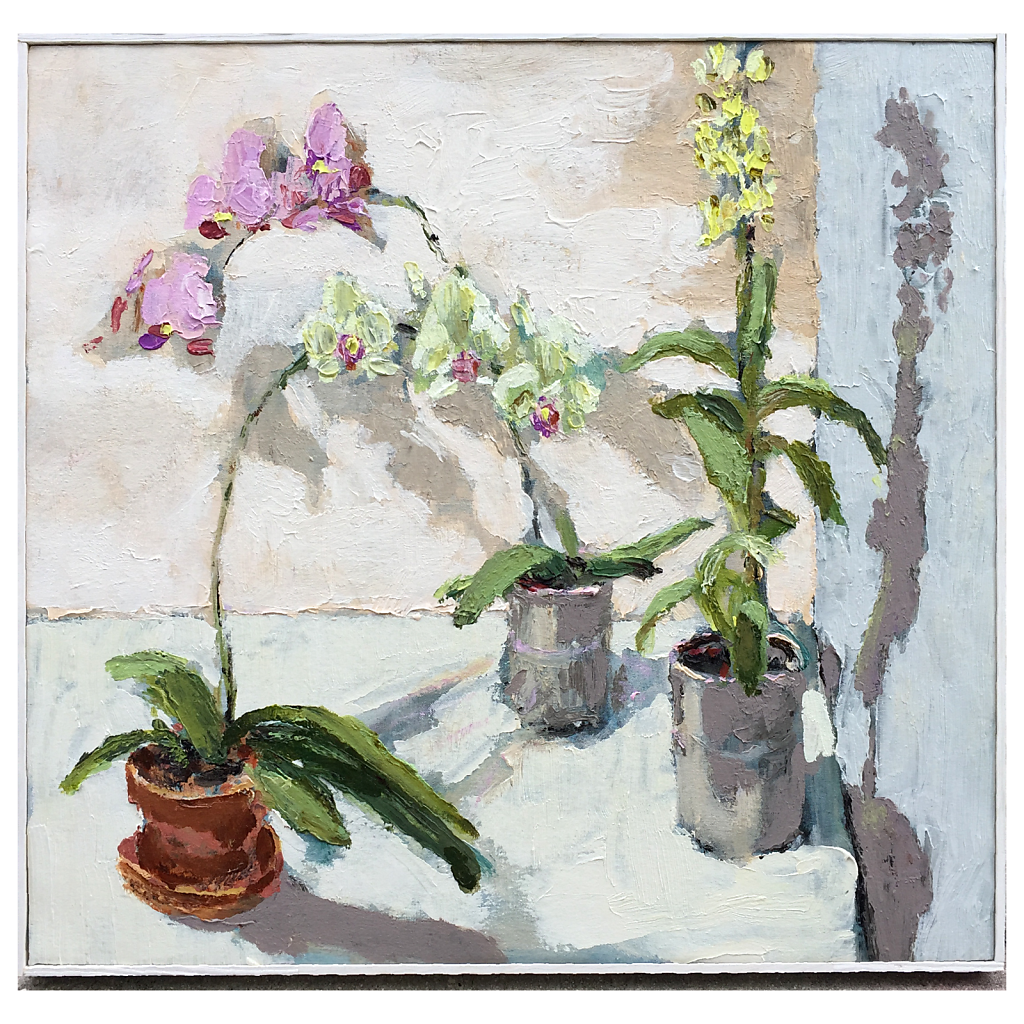 Orchids one
