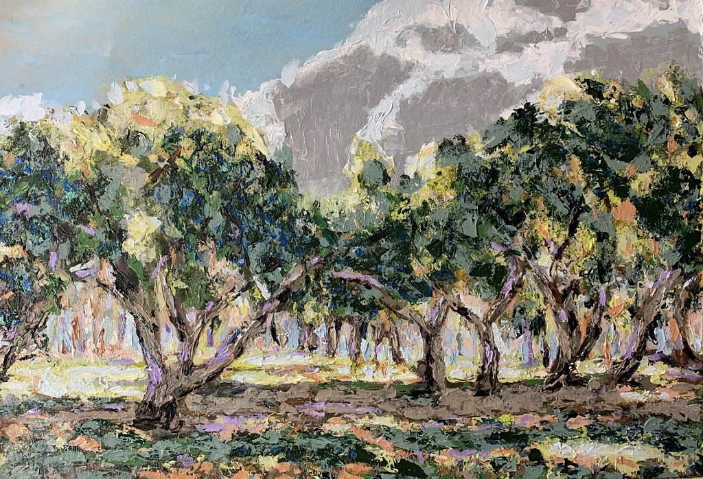 Mango grove 2